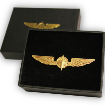 Значка Pilot Wings